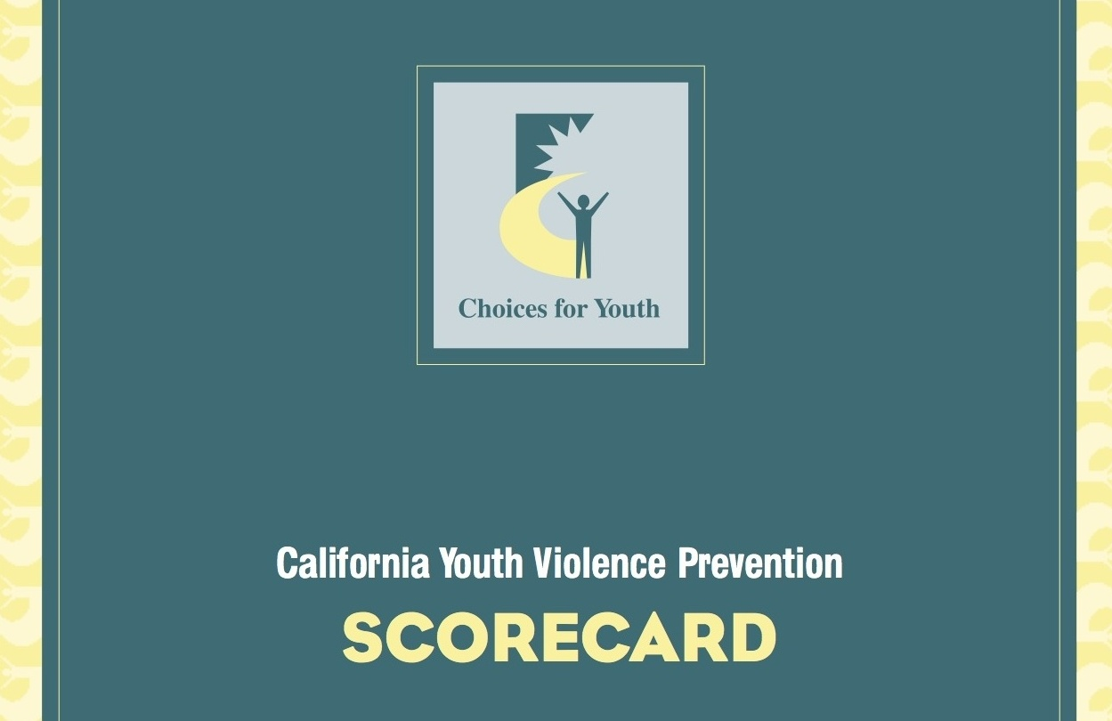 Choices for Youth 2002 Scorecard